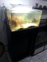 Aquario + armário + luminária