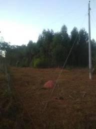 Terra rural