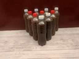 Adubo Orgânico - Líquido (chorume) Natural