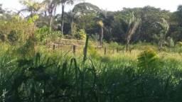 Vendo uma hectaria de terra