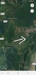 Fazenda Jaguaripe 1900 ha