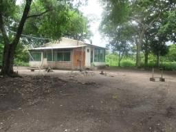 Fazenda na região do abobral,pra venda e arrendamento.2,800 ha
