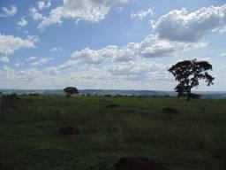 Vendo terras