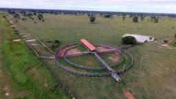 15.000 hectares Região do Pantanal