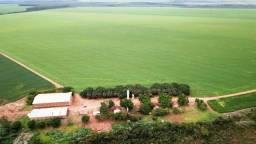 Fazenda 32.432 ha Primavera do Leste MT