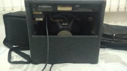 Amplificador Peavey Audition 110