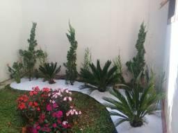 Jardinagem e Manutenções de Jardins