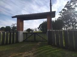 Velleda oferece sitio 3,5 hectares, muita estrutura, aceita imóvel na troca
