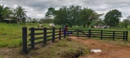 Sítio à venda, por R$ 2.537.500 - Zona Rural - Cacaulândia/Rondônia