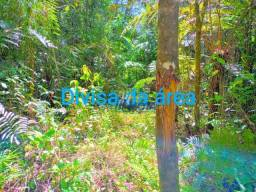 Área a venda Serra Negra, Guaraqueçaba com 27,9 alqueires Plana com nascentes rio na divis