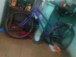 Bicicleta potti