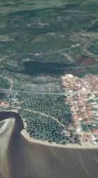 Vendo area beira da pista Maragogi