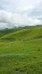 Fazenda em Messias 54 hectares