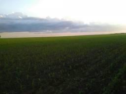 Fazenda à venda, 5953200 m² por R$ 16.500.000,00 - Zona Rural - Bonito/MS