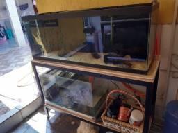 Vende-se aquário 240 litros completo