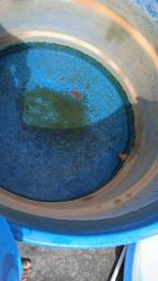 Limpeza de Caixa de Água no turu , limpeza de Caixa de Água