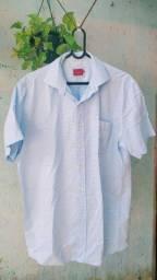Camisa brookfield