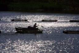 Fazenda 63 hectares para criação de peixes em Funilandia