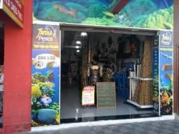 Pesca, uma das mais completa loja de pesca da região