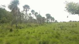 Chácara 12 hectares em Boa Vista/RR, ler descriçao do anuncio