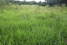 Fazenda de 100 hectares em Curvelo