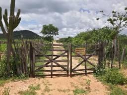 Vendo Sítio Lagoa Nova com 50 hectares e bem conservado