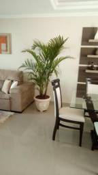 Vaso com planta para decoração