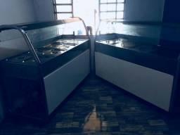 Estufas Elétricas Salradeira e de Comida