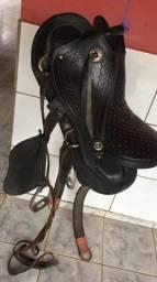 ca771fe28 Cavalos no Brasil - Página 16 | OLX