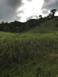 Fazenda em Iguaí BA (alugo ou arrendo)