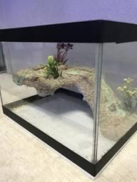 Terrário aquaterrario novo, plataforma decorada, vidro com tampa