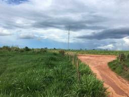 Fazenda 95 Alqueires | 130 km Rio Verde | oport. Única