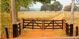 Crédito rural D