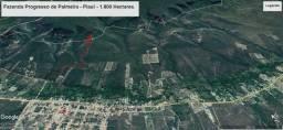 Fazenda no Piauí - Vendo, Permuto ou Arrendo para Lavoura.