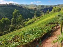 Vendo Sítio/chácara com plantação de chuchu