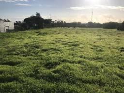 Europa! Grande terreno em Portugal -5430m2- Zona de faro- Excelente para investimento!