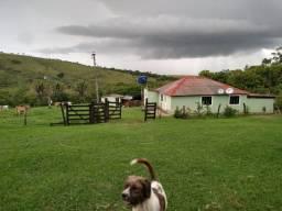 Fazenda 30 alquieres municipio de cocalzinho, 7 km da cidade,