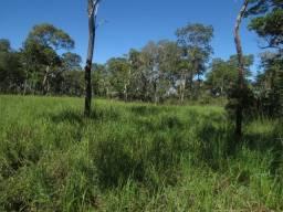 Fazenda muito bem localizada no Pantanal de 5,900 há ( aceita permuta )