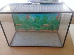 Vendo aquário 60x40x26 com cantoneiras $140
