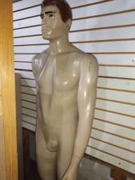 manequin masculino completo e busto feminino