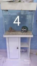 Aquário 4