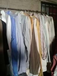 Camisa social manga longa 12 manga curta 10