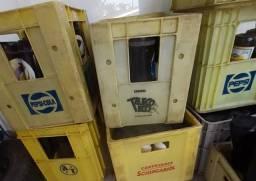 Vasilhames com caixa(litrao e 600)