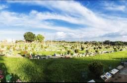 Jazido no cemitério em timon