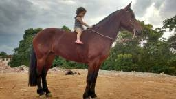 Egua crioula faço rolo e asumir