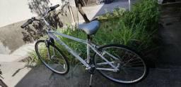 Bike fuji