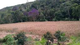 Terreno rural em Venda Nova do Imigrante