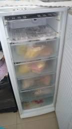 Freezer vertical 110v
