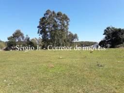 Área de terra com 2,3h e arroio em Triunfo - 300 metros do asfalto