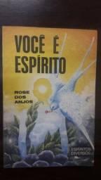 livro: você é espírito <br>